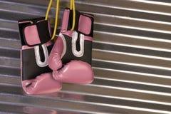 停止在异常分支的桃红色拳击手套 库存照片