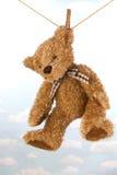 停止在晾衣绳干燥的玩具熊 免版税图库摄影