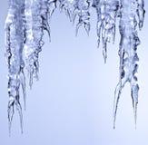 停止的冰iciclesparkling的熔化 免版税库存照片