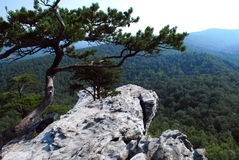 停止的岩石远景 库存照片
