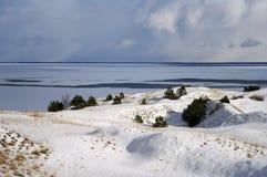 停止的沙丘冬天 免版税库存照片