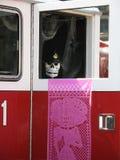 停止的消防员万圣节 免版税库存图片