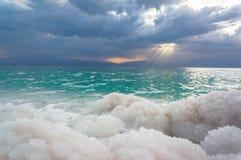 停止的盐海运 图库摄影