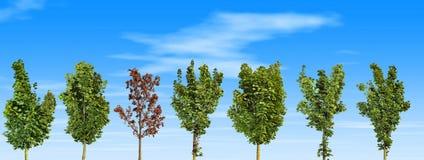停止的结构树 皇族释放例证