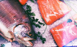 停止的鲜美鱼题头在冰的 免版税库存图片