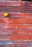 停止红色墙壁的谷仓杯子 库存照片