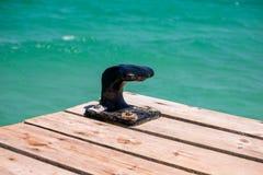 停泊的一条小船一个黑点病在一只木跳船在马略卡海滩 免版税库存照片