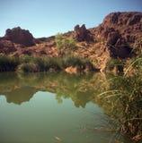 停滞沙漠的池塘 图库摄影
