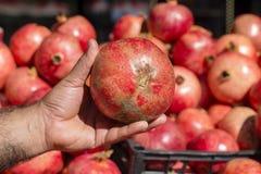 停滞石榴,关闭的土耳其卖主人 新鲜,红色石榴石待售在一个地方农夫市场上在土耳其 免版税图库摄影
