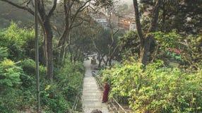 停留在台阶的修士在城市公园在加德满都 库存图片