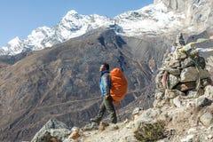 停留在小径的尼泊尔专业山指南画象  免版税库存照片