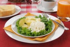 健康低卡路里食物早餐 免版税图库摄影