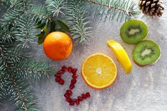 健康假日食物和饮食 新年关于一种健康生活方式的` s决定 免版税图库摄影