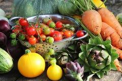 健康做烹调或的沙拉的,拷贝空间新鲜的未加工的蔬菜成份 饮食或素食主义者食物概念 图库摄影