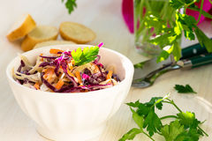 健康凉拌卷心菜用红叶卷心菜和红萝卜 库存图片