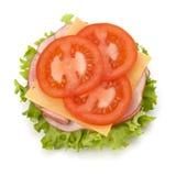 健康单片三明治 库存图片