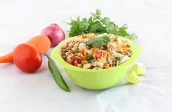 健康印地安素食食物发芽的Moong沙拉 免版税图库摄影