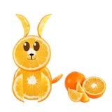 健康吃。滑稽的兔子被做橙色切片。 库存照片