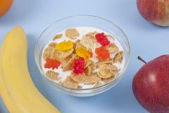 健康吃早餐碗低卡路里muesli用果子 图库摄影