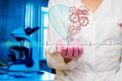 健康和医学的概念-拿着与齿轮的女性医生红色心脏有ecg的排行 库存照片