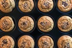 健康在平底锅的松饼wioth混杂的种子 顶视图 库存照片