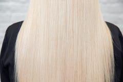 健康头发纹理女性白肤金发的后面,白色背景 概念治疗关心 免版税库存照片