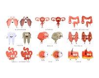 健康对不健康的人体器官Infographic例证 向量例证