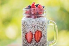 健康层状点心用chia布丁、草莓和忍冬属植物在一个金属螺盖玻璃瓶在绿叶背景  免版税库存照片