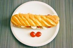 与金枪鱼、蕃茄和无盐干酪的健康长方形宝石面包 库存图片