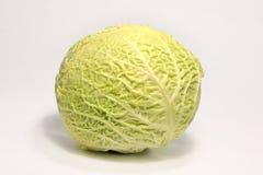 健康新鲜的圆白菜 库存图片