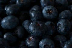 健康新鲜的成熟水多的蓝莓关闭  免版税库存照片