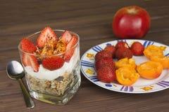 健康早餐用果子 自创酸奶、燕麦粥用草莓,杏子和巧克力 免版税库存照片
