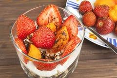 健康早餐用果子 自创酸奶、燕麦粥用草莓,杏子和巧克力 库存照片