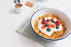 健康早餐用谷物和莓果在e 库存照片