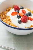 健康早餐用谷物和莓果在e 免版税库存照片
