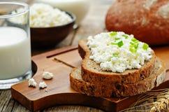 健康早餐用整个五谷黑麦面包,酸奶干酪和 库存照片