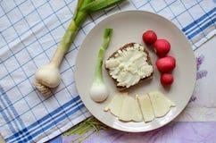 健康早餐由面包制成用羊奶乳酪、春天葱、萝卜和大蒜 库存照片