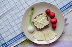 健康早餐由面包制成用羊奶乳酪、春天葱和萝卜 库存照片