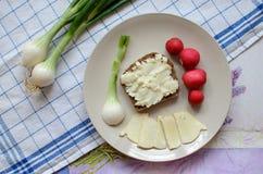 健康早餐由面包制成用羊奶乳酪、春天葱和萝卜 免版税库存图片