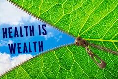 健康是财富词在拉链叶子下 库存照片
