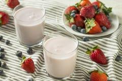 健康有机可喝的酸奶莓果牛乳气酒 图库摄影
