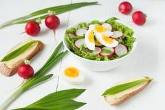 健康有机营养春天沙拉与 图库摄影