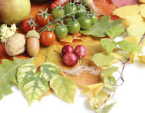 健康有机蔬菜和水果 免版税库存图片