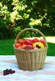 健康果子野餐 库存照片