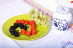 健康果子17 库存图片