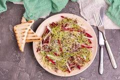 健康沙拉用未加工的甜菜根、萝卜和韭葱新芽 免版税库存照片