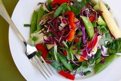 健康沙拉顶视图 库存图片