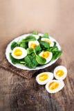 健康沙拉-菠菜婴孩叶子和煮沸的鸡蛋在hal切开了 免版税库存照片