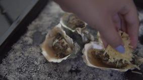 健康海鲜,特写镜头新鲜的开放牡蛎用乳酪 股票录像
