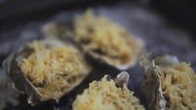 健康海鲜,特写镜头新鲜的开放牡蛎用在一个烤板的乳酪与盐 股票视频